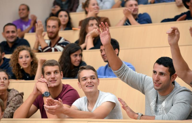 Parama išeivijos ir lietuvių kilmės užsieniečiams studentams