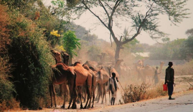"""Pristatyta VGTU profesoriaus Remigijaus Venckaus fotografijų paroda """"Etiopijos kelias"""""""