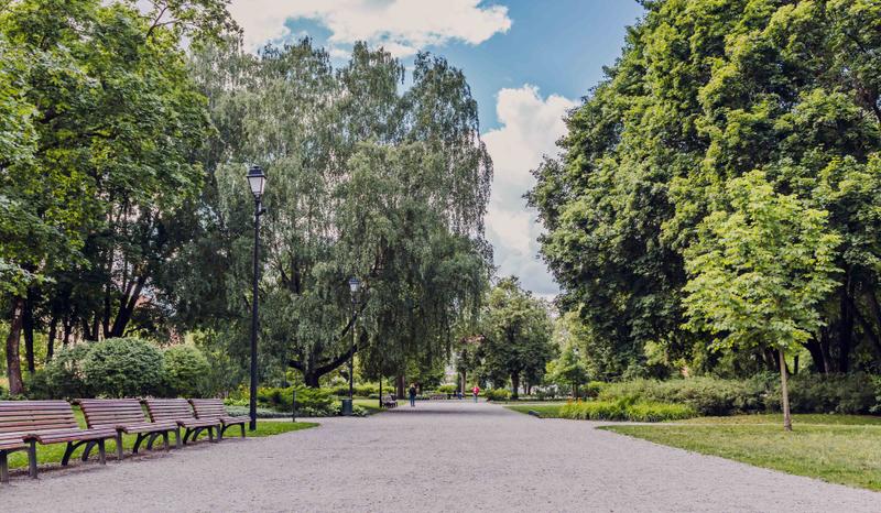 """Prof. dr. Gintaras Stauskis: """"Žaliųjų erdvių kiekis miestui kartu yra ir iššūkis – šias zonas reikia tvarkyti"""""""