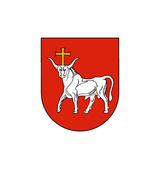 Kaunas city municipality