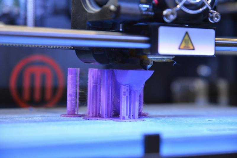 Pažintis su inžinerija: nuo 3D technologijų iki tarakonų lenktynių (fotogalerija)