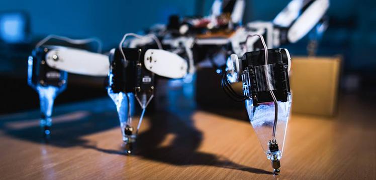 Robotai: ilga istorija, klestinti dabartis ir nežinoma ateitis
